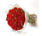 Sweet Flame (Carnations)