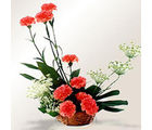 A Basket of Love (Carnations)