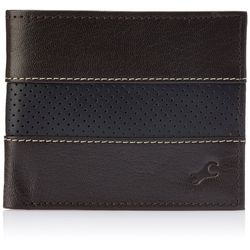 Fastrack Men Genuine Leather Wallet - C0377LBR01, brown