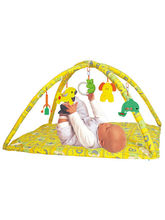 Little Baby Gym, multicolor