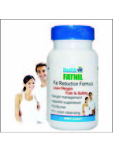 HealthVit FATNIL Natural Fat Burner 60 Capsules