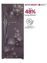 LG 284 Ltr, Frost Free Refrigerator With New Auto Smart Connect Technology, Smart Inverter Compressor (GL-I302RGFL), graphite florid