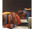 Aapno Rajasthan Polyester Double Bedsheet with Contemporary Print, multicolor