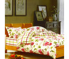 Aapno Rajasthan Rejuvenating Cotton Double Bedsheet with Floral Print, multicolor