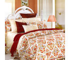 Aapno Rajasthan Elegant Cotton Double Bedsheet with Floral Print, multicolor