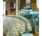 Aapno Rajasthan Beautiful Cotton Double Bedsheet with Spraeded Paisley Print, green