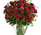 Dazzling Red Roses