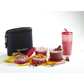 Signoraware Combo Executive Lunch Box Big With Bag, multicolor