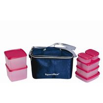 Signoraware Picnic Lunch Set With Bag, multicolor