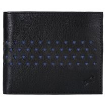 Fastrack Blue Genuine Leather Wallet For Men (C0403LBL02)