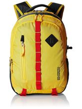 American Tourister Zap-01 Laptop Backpack (14O (0) 06 001), yellow