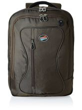 American Tourister Clive-01 Laptop Backpack - Tobaco (61W (0) 13 201), brown