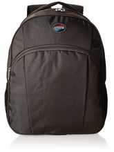 American Tourister Clive-05 Laptop Backpack - Tobaco (61W (0) 13 205), brown