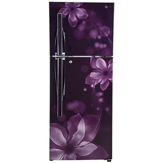 LG GL-I292RPOY 260 L Double Door Refrigerator, purple orchid