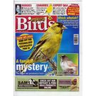 Cage and Aviary Birds, single issue, english