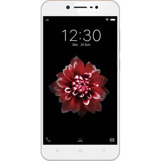 Vivo Y66 (32 GB,Crown Gold)
