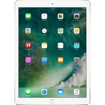 Apple iPad 9.7 inch with Wi-Fi Only,  gold, 128 gb
