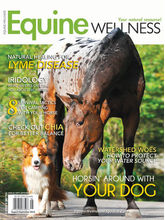 Equine Wellness, 1 year, english