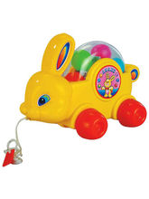 Anand Bunny, multicolor