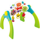 Winfun Grow with Me Melody Gym, multicolor